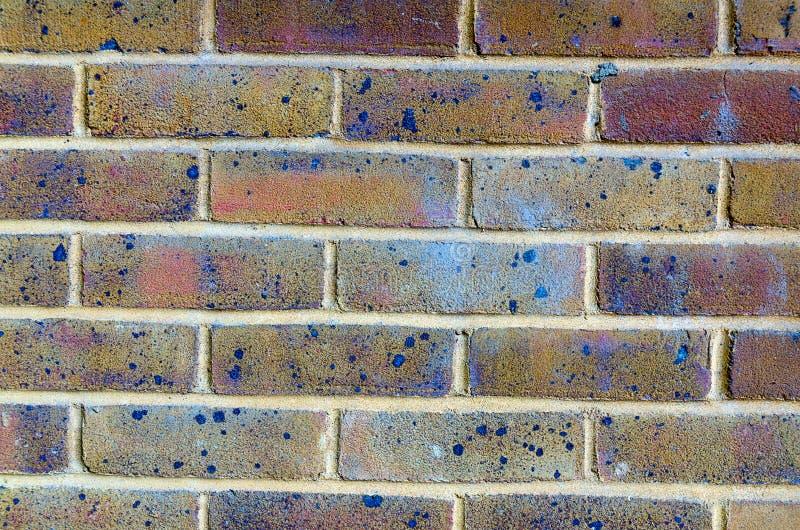 Priorità bassa del muro di mattoni Fondo di vecchio muro di mattoni d'annata muro di mattoni con i colori fotografie stock