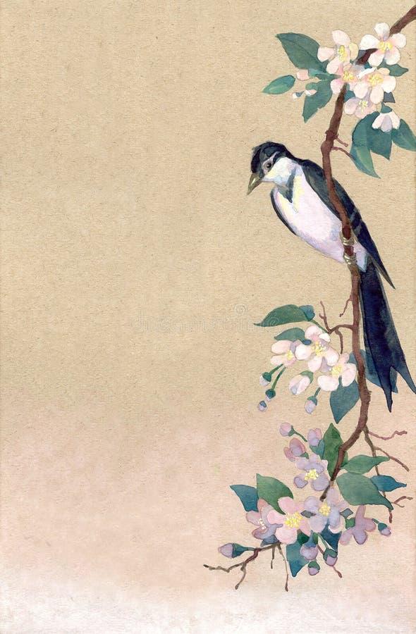 Priorità bassa dell'acquerello Robin su un ramo dei fiori della mela royalty illustrazione gratis
