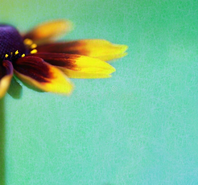 Priorità bassa dell'annata con il bello fiore immagine stock libera da diritti