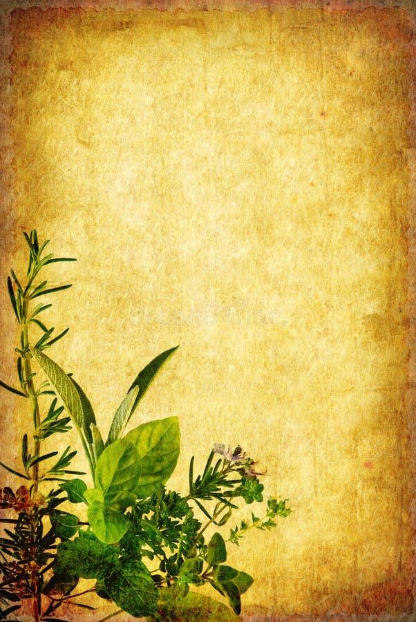 Priorità bassa dell'erba di Grunge illustrazione vettoriale