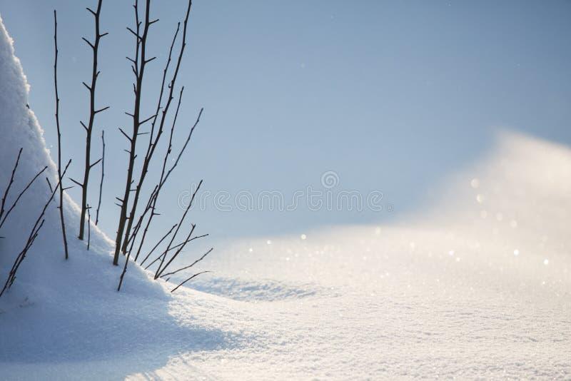 Priorità bassa della neve di inverno fotografia stock libera da diritti