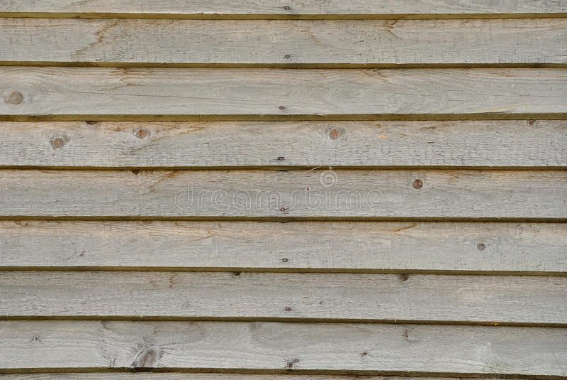 Priorità bassa della parete della scheda di legno fotografia stock
