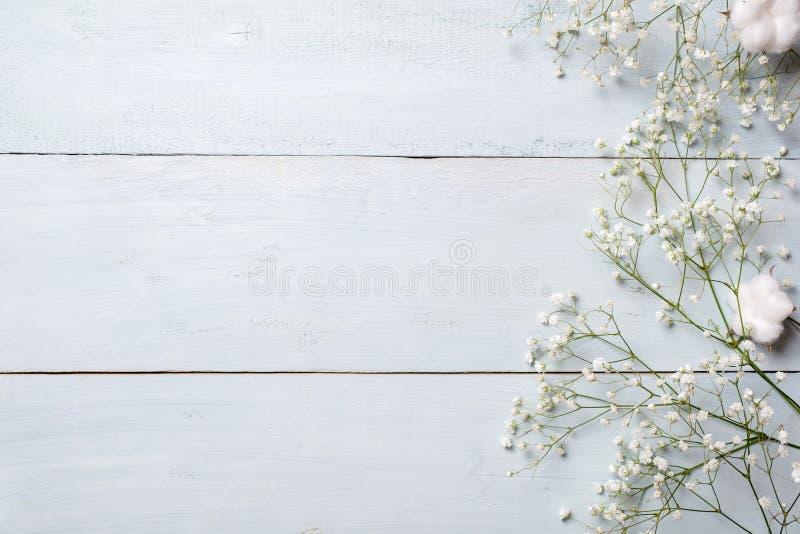 Priorità bassa della sorgente Fiori rustici bianchi sulla tavola di legno blu Modello dell'insegna per il giorno di madre o della fotografie stock