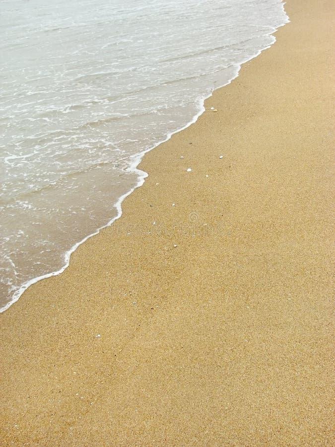 Priorità bassa della spiaggia fotografia stock