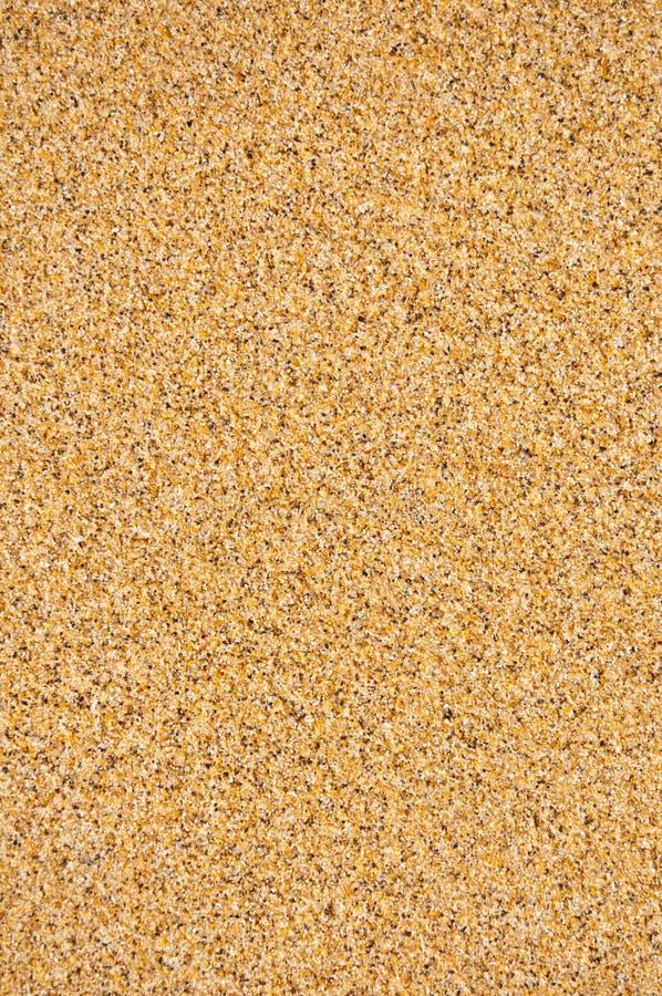 Priorità bassa della spiaggia della sabbia fotografia stock libera da diritti