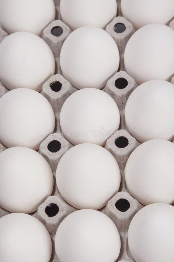 Priorità bassa delle uova bianche fotografia stock libera da diritti