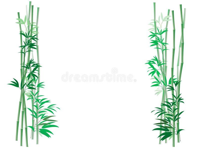 Priorità bassa di bambù del boschetto illustrazione vettoriale