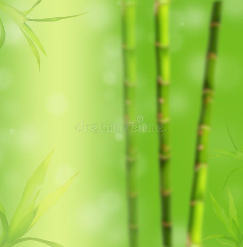 Priorità bassa di bambù della sfuocatura immagini stock libere da diritti