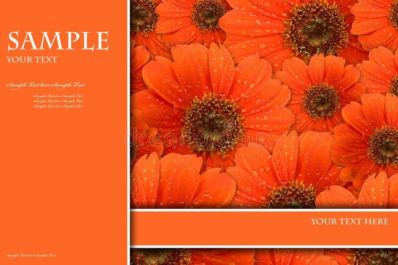Priorità bassa di colore per la copertina di libro o della scheda illustrazione vettoriale