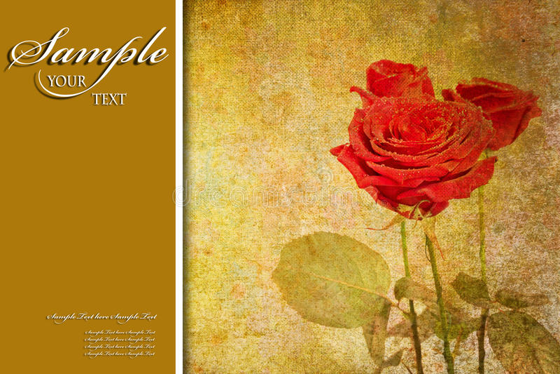 Priorità bassa di colore per la copertina di libro o della scheda illustrazione di stock