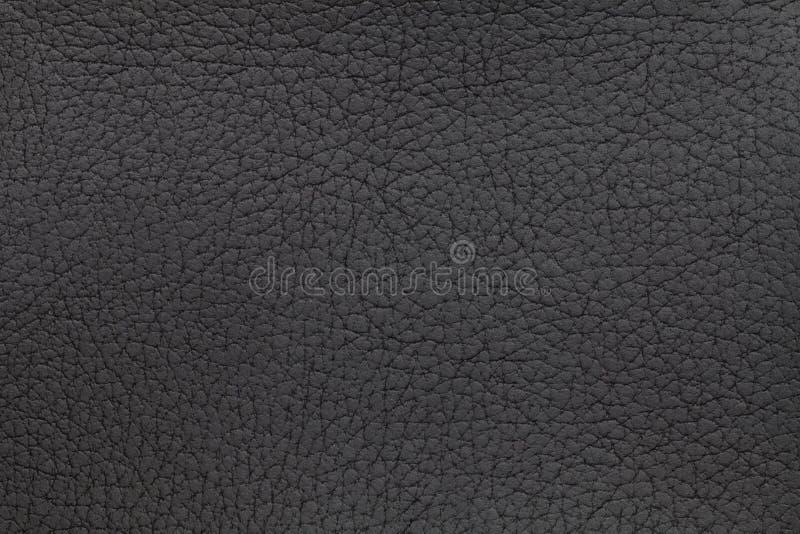 Priorità bassa di cuoio nera di struttura Foto del primo piano Pelle del rettile immagine stock libera da diritti