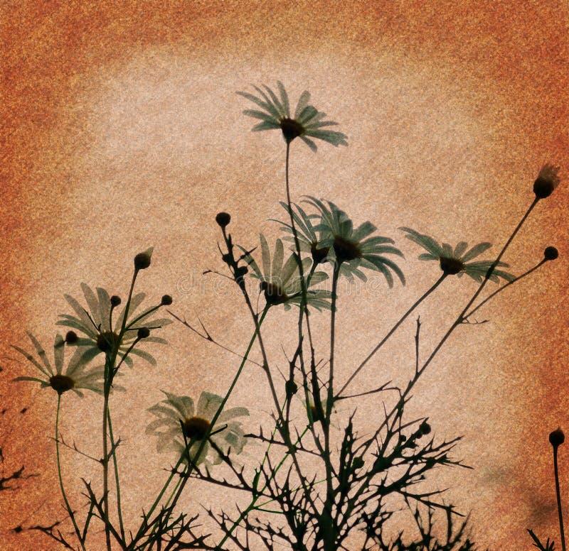 Download Priorità bassa di Grunge fotografia stock. Immagine di closeup - 3148382