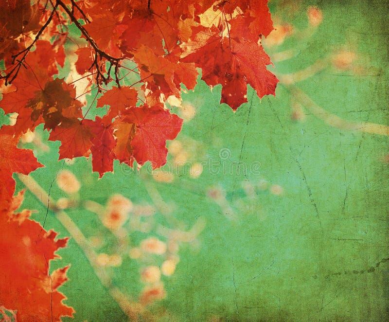 Priorità bassa di Grunge con i fogli di autunno royalty illustrazione gratis