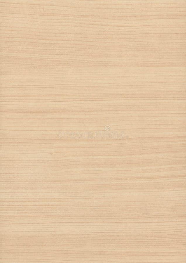 Priorità bassa di legno di struttura del granulo fotografia stock libera da diritti
