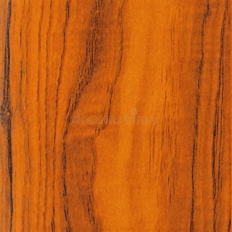 Priorità bassa di legno di struttura del primo piano fotografie stock