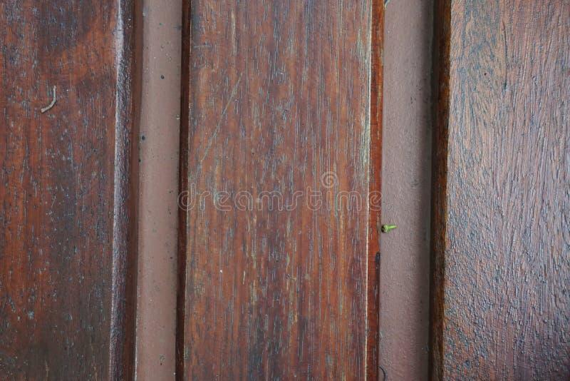 Priorità bassa di legno di struttura fondo di struttura del dettaglio del tronco Gnarl l'albero immagini stock