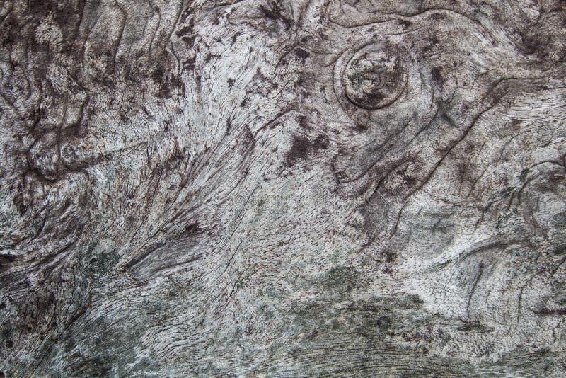 Priorità bassa di legno di struttura superficie di vecchia annata scura, modello naturale il materiale di legno della tavola è st fotografie stock
