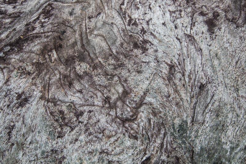 Priorità bassa di legno di struttura superficie di vecchia annata scura, modello naturale il materiale di legno della tavola è st immagini stock