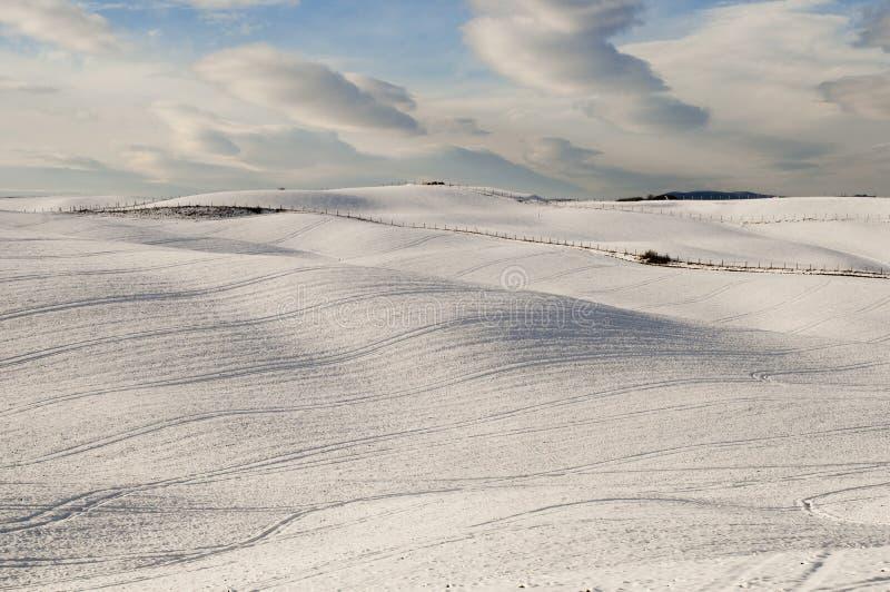 Priorità bassa di Snowscape fotografie stock