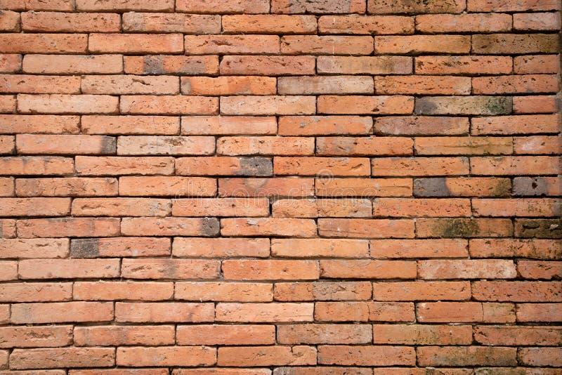 Priorità bassa di struttura del muro di mattoni royalty illustrazione gratis