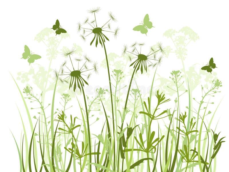 Priorità bassa floreale con erba ed i denti di leone illustrazione di stock