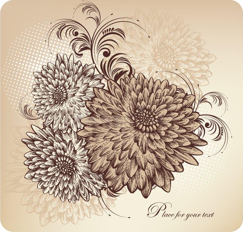 Priorità bassa floreale con i crisantemi di fioritura, ha illustrazione vettoriale