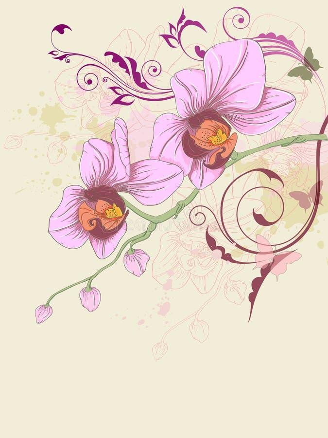 Priorità bassa floreale con l'orchidea e l'ornamento illustrazione di stock