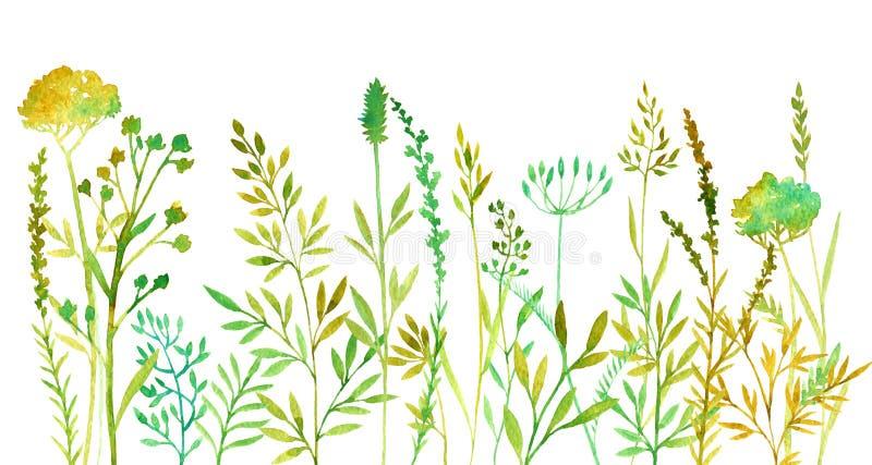 Priorità bassa floreale di colore disegnato a mano illustrazione di stock