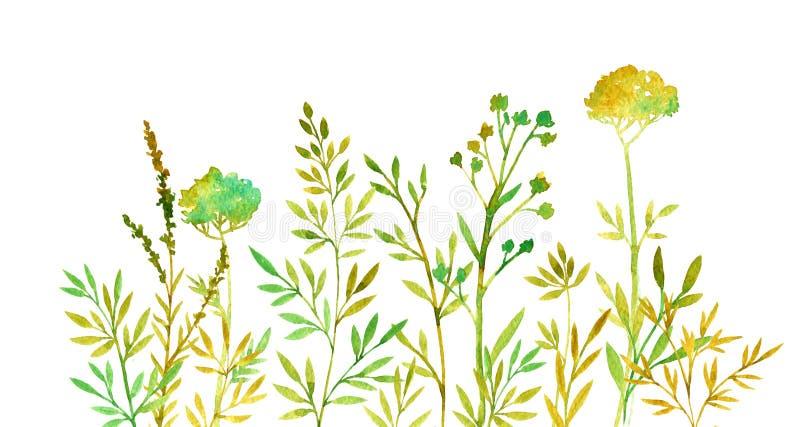 Priorità bassa floreale di colore disegnato a mano illustrazione vettoriale