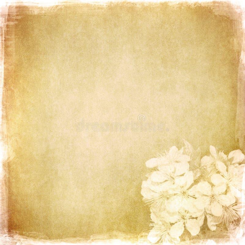 Priorità bassa floreale di Grunge con spazio per testo royalty illustrazione gratis