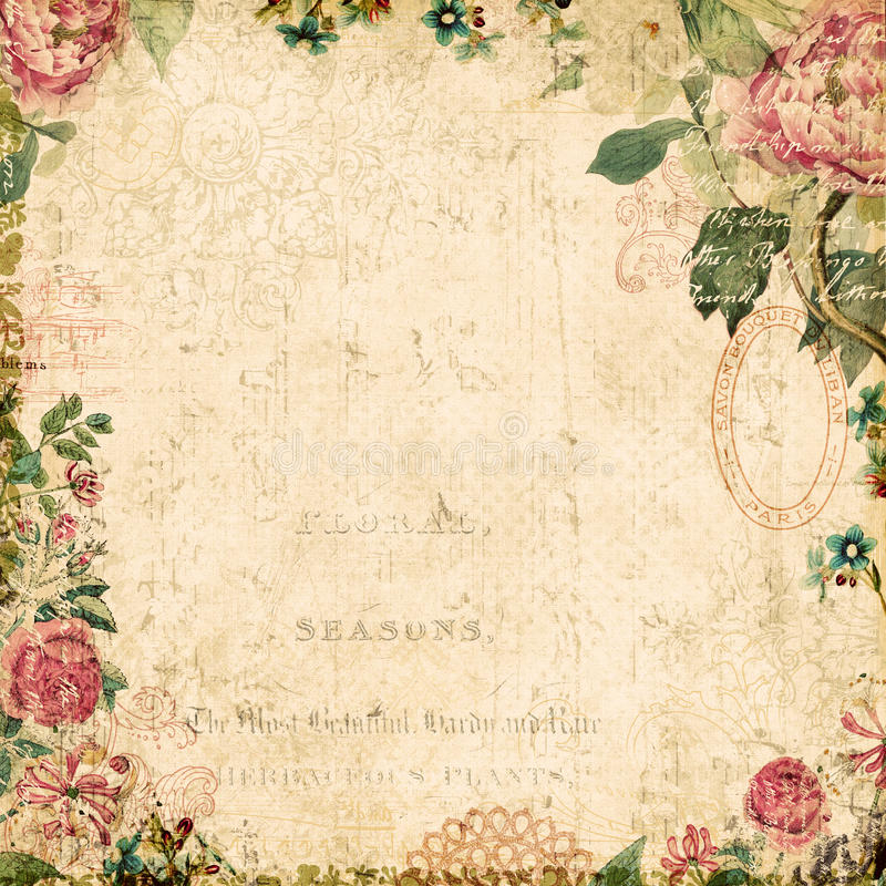 Priorità bassa incorniciata floreale botanica di stile dell'annata illustrazione vettoriale