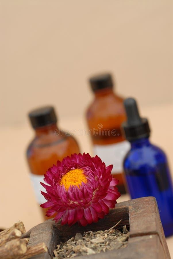 Priorità bassa per i Herbalists fotografie stock libere da diritti