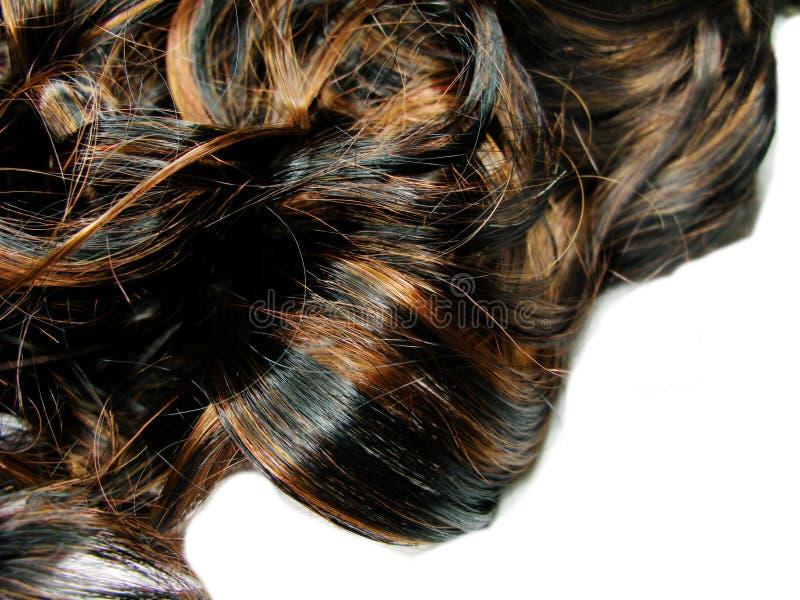 Priorità bassa riccia scura di struttura dei capelli di punto culminante immagini stock