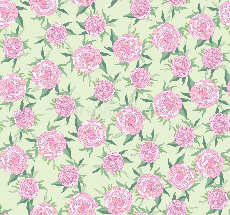 Priorità bassa senza giunte dalle rose lilla illustrazione vettoriale