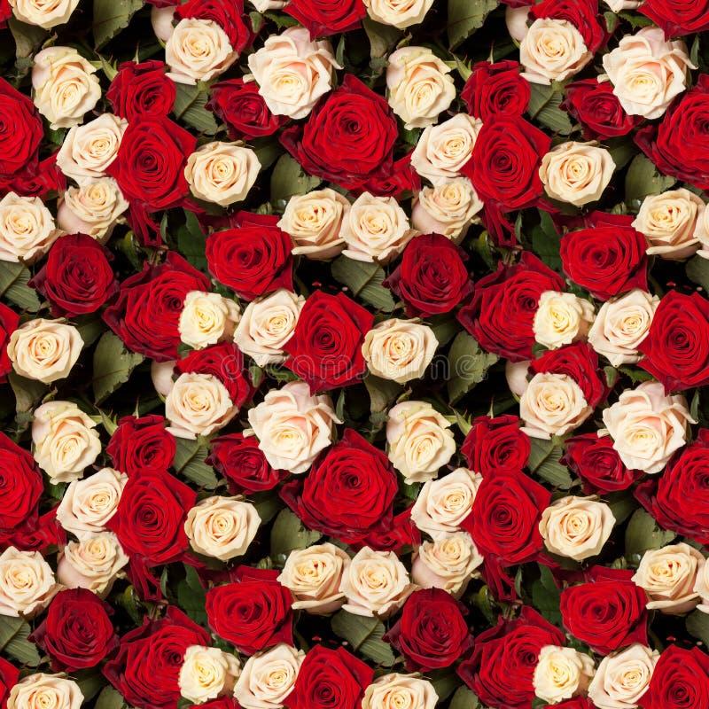Priorità bassa senza giunte delle rose immagini stock libere da diritti
