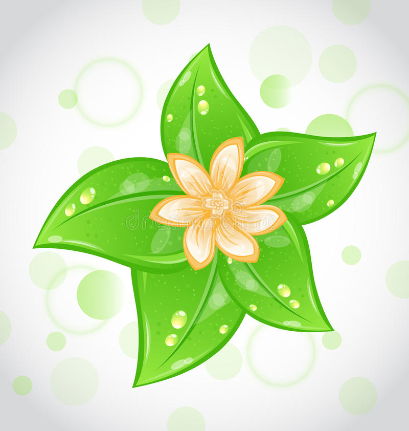 Priorità bassa sveglia di eco con i fogli ed il fiore di verde illustrazione di stock