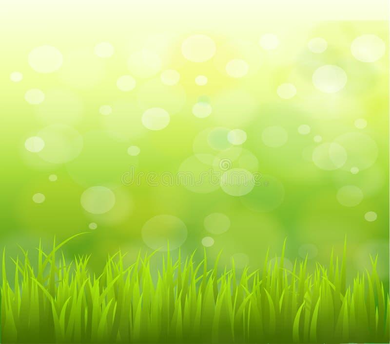 Priorità bassa verde naturale con il fuoco selettivo immagini stock libere da diritti