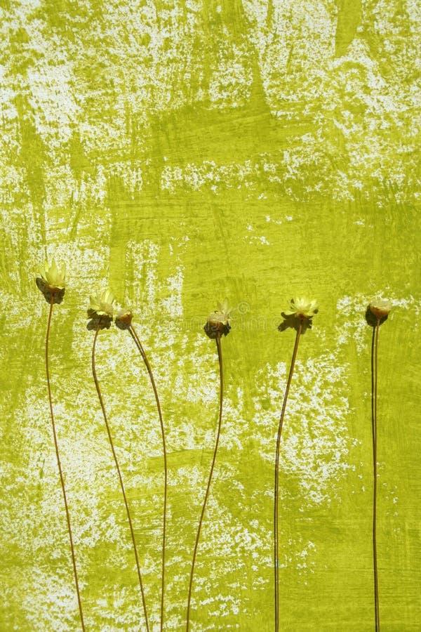 Priorità bassa verniciata e fiori secchi royalty illustrazione gratis