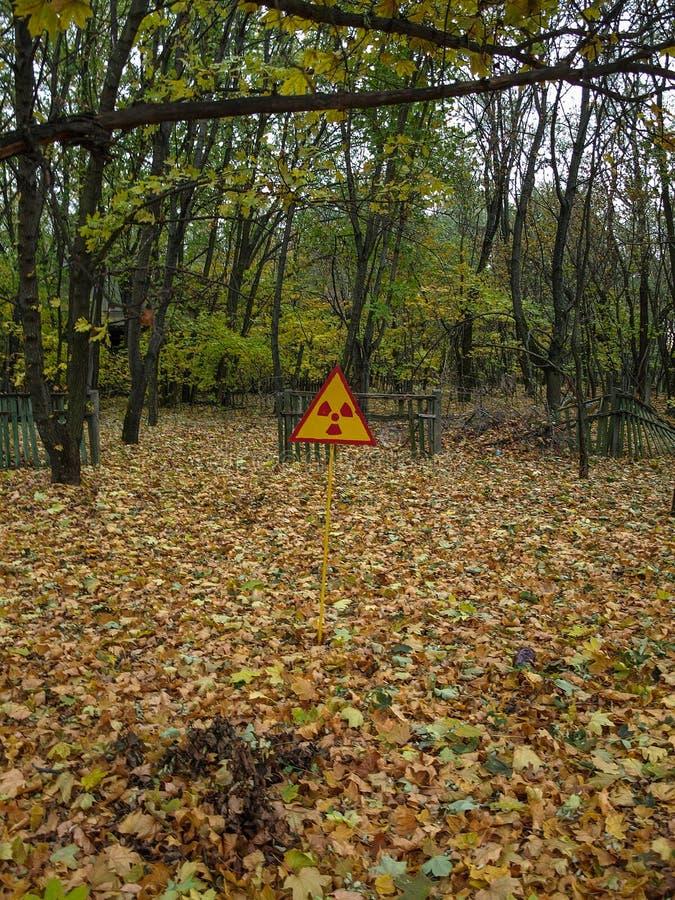 Pripyat na zona de exclusão de Chernobyl, Ucrânia, 2016 imagem de stock royalty free