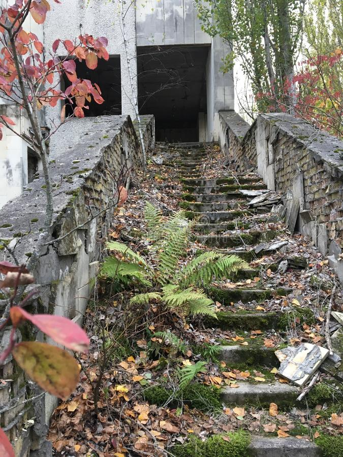 Pripyat trappa royaltyfria bilder