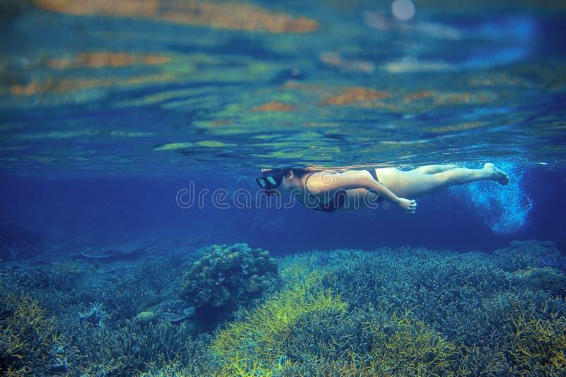 Prise d'air de femme en récif coralien Jeune fille dans le bikini nageant sous l'eau Naviguer au schnorchel en mer tropicale image libre de droits