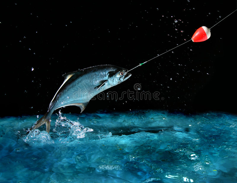 Prise d'un grand poisson la nuit photo stock