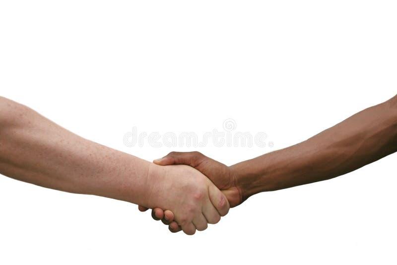Prise de contact multiraciale d'isolement sur le blanc photographie stock libre de droits
