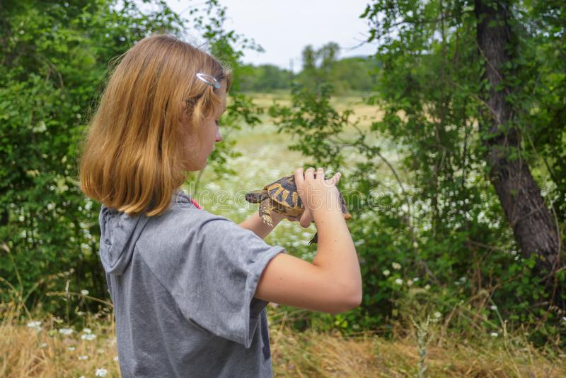 Prise de fille la tortue photo libre de droits