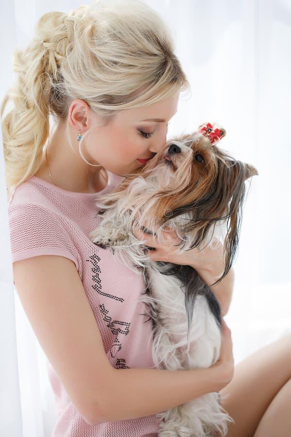 Prises de fille sur des mains Yorkshire Terrier images libres de droits