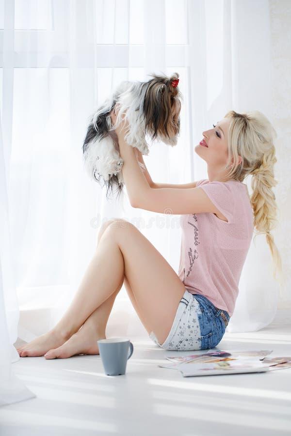 Prises de fille sur des mains Yorkshire Terrier photographie stock libre de droits