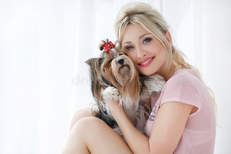 Prises de fille sur des mains Yorkshire Terrier photos stock