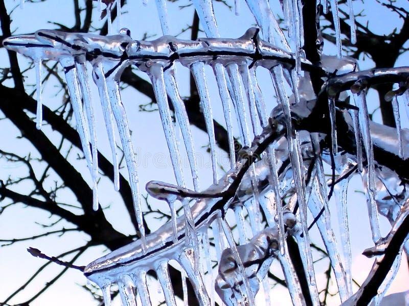 Prisión del hielo fotografía de archivo