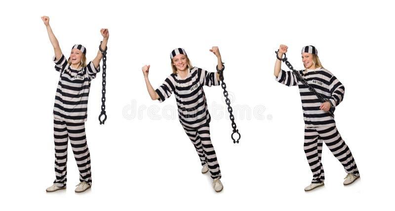 Prisioneiro isolado no fundo branco imagem de stock