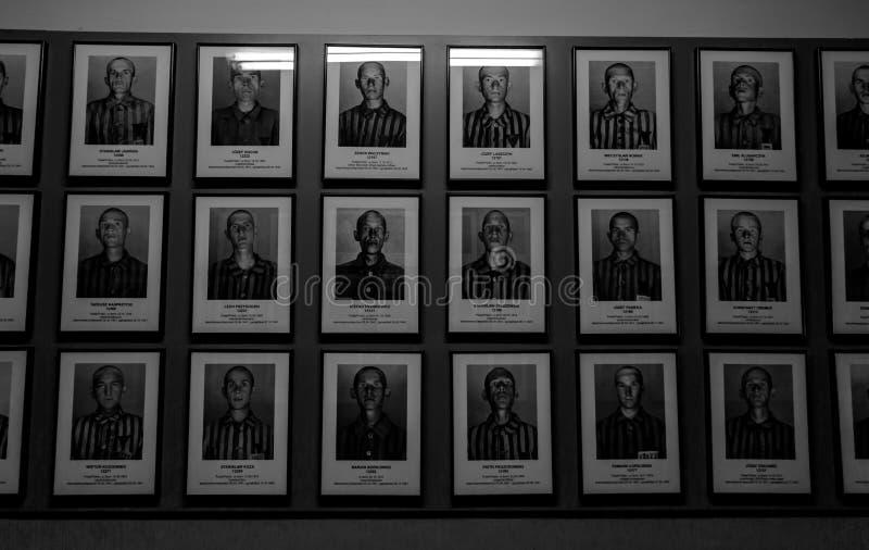 Prisioneiros de Auschwitz imagens de stock royalty free